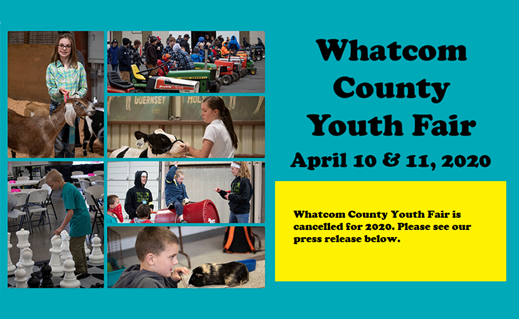 whatcom county youth fair 2020 welcome to our learning fair whatcom county youth fair 2020